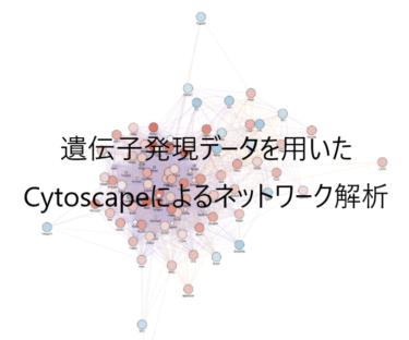 遺伝子発現データを用いたCytoscapeによるネットワーク解析